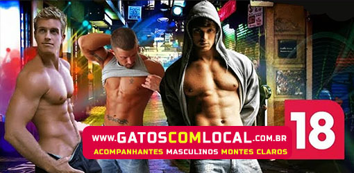 GATOS COM LOCAL